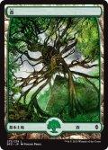 《森/Forest》(273)【JPN】[BFZ土地C]