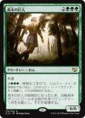 《高木の巨人/Arbor Colossus》【JPN】[C15緑R]