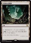 《不気味な辺境林/Grim Backwoods》【JPN】[C15土地R]