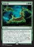 《起源の嵐/Genesis Storm》【JPN】[C18緑R]
