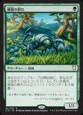 《硬鎧の群れ/Scute Mob》【JPN】[C18緑R]