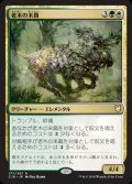《老木の末裔/Elderwood Scion》【JPN】[C18金R]