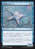 《印章持ちのヒトデ/Sigiled Starfish》【JPN】[C18青U]