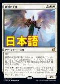 《賞罰の天使/Angel of Sanctions》【JPN】[C19白M]