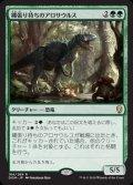 《縄張り持ちのアロサウルス/Territorial Allosaurus》【JPN】[DOM緑R]