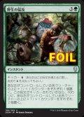 《野生の猛攻/Wild Onslaught》FOIL【JPN】[DOM緑U]