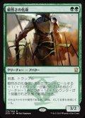 《毅然さの化身/Avatar of the Resolute》【JPN】[DTK緑R]