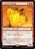 《スカルガンの火の鳥/Skarrgan Firebird》【JPN】[GK2赤R]