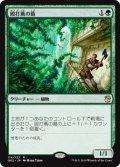 《殴打蔦の葛/Vinelasher Kudzu》【JPN】[GK2緑R]