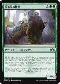 《樹木園の精霊/Arboretum Elemental》【JPN】[GRN緑U]
