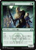 《ゴルガリの略奪者/Golgari Raiders》【JPN】[GRN緑U]
