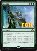 《力の報奨/Bounty of Might》FOIL【JPN】[GRN緑R]