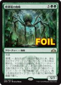 《孵卵場の蜘蛛/Hatchery Spider》FOIL【JPN】[GRN緑R]