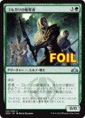 《ゴルガリの略奪者/Golgari Raiders》FOIL【JPN】[GRN緑U]