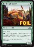 《絡み合うモウセンゴケ/Grappling Sundew》FOIL【JPN】[GRN緑U]