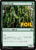 《落とし格子の蔦/Portcullis Vine》FOIL【JPN】[GRN緑C]