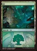 《森/Forest》FOIL【JPN】[GRN土地C](ゴルガリ)