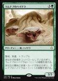 《ラムナプのハイドラ/Ramunap Hydra》【JPN】[HOU緑R]