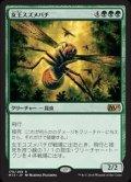 《女王スズメバチ/Hornet Queen》FOIL【JPN】[M15緑R]