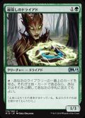《緑探しのドライアド/Dryad Greenseeker》【JPN】[M19緑U]