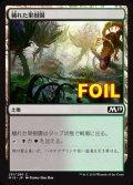 《穢れた果樹園/Foul Orchard》FOIL【JPN】[M19土地C]