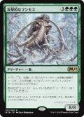 《攻撃的なマンモス/Aggressive Mammoth》【JPN】[M19緑R]