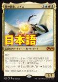 《風の憤怒、カイカ/Kykar, Wind's Fury》【JPN】[M20金R]