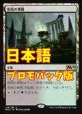 《疾病の神殿/Temple of Malady》【JPN】[---土地R]