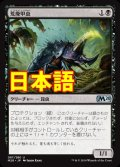 《荒廃甲虫/Blightbeetle》【JPN】[M20黒U]
