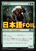 《吠える巨人/Howling Giant》FOIL【JPN】[M20緑U]
