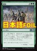 《超克/Overcome》FOIL【JPN】[M20緑U]