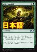 《ムラーサの胎動/Pulse of Murasa》【JPN】[M20緑U]
