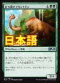 《打ち壊すブロントドン/Thrashing Brontodon》【JPN】[M20緑U]