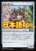 《見本に倣うもの/Pattern Matcher》FOIL【JPN】[M20茶U]