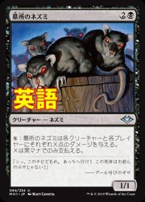 画像1: 《墓所のネズミ/Crypt Rats》【ENG】[MH1黒U]