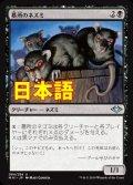 《墓所のネズミ/Crypt Rats》【JPN】[MH1黒U]