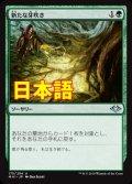 《新たな芽吹き/Regrowth》【JPN】[MH1緑U]