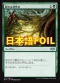 《新たな芽吹き/Regrowth》FOIL【JPN】[MH1緑U]