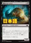 《暴食するナメクジ/Gluttonous Slug》【JPN】[MH1黒C]