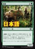 《母熊/Mother Bear》【JPN】[MH1緑C]