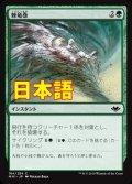 《棘竜巻/Thornado》【JPN】[MH1緑C]