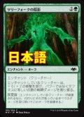 《ツリーフォークの陰影/Treefolk Umbra》【JPN】[MH1緑C]