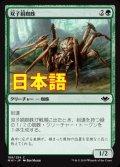 《双子絹蜘蛛/Twin-Silk Spider》【JPN】[MH1緑C]