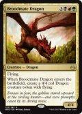 《若き群れのドラゴン/Broodmate Dragon》【ENG】[MM3金R]