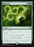 《原初の命令/Primal Command》FOIL【JPN】[MM3緑R]