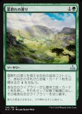《雷群れの渡り/Thunderherd Migration》【JPN】[RIX緑U]