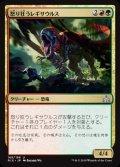《怒り狂うレギサウルス/Raging Regisaur》【JPN】[RIX金U]