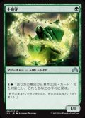 《土地守/Groundskeeper》【JPN】[SOI緑U]