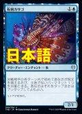 《有刺カサゴ/Stinging Lionfish》【JPN】[THB青U]
