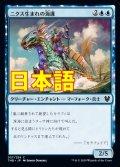 《ニクス生まれの海護/Nyxborn Seaguard》【JPN】[THB青C]